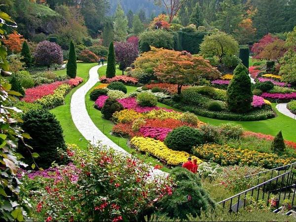 Cvijeće oko kuće  - Page 6 Botanicka_zahrada_v_balciku_100608-123343